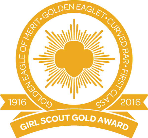 Image result for gold scout award